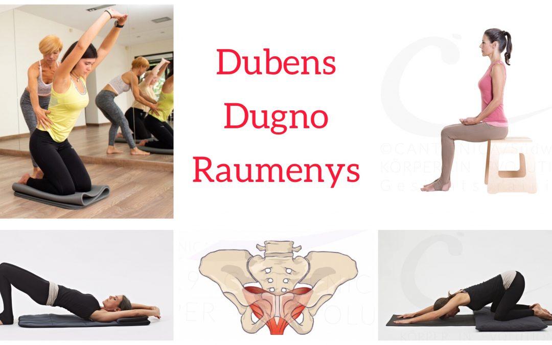 DUBENS DUGNO raumenys / Kursas mini grupėje nuo rugsėjo 13d.